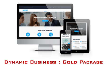 Dynamic Business Web : Gold Package